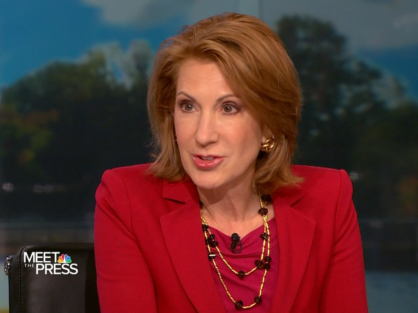 Carly Fiorina - Meet the Press