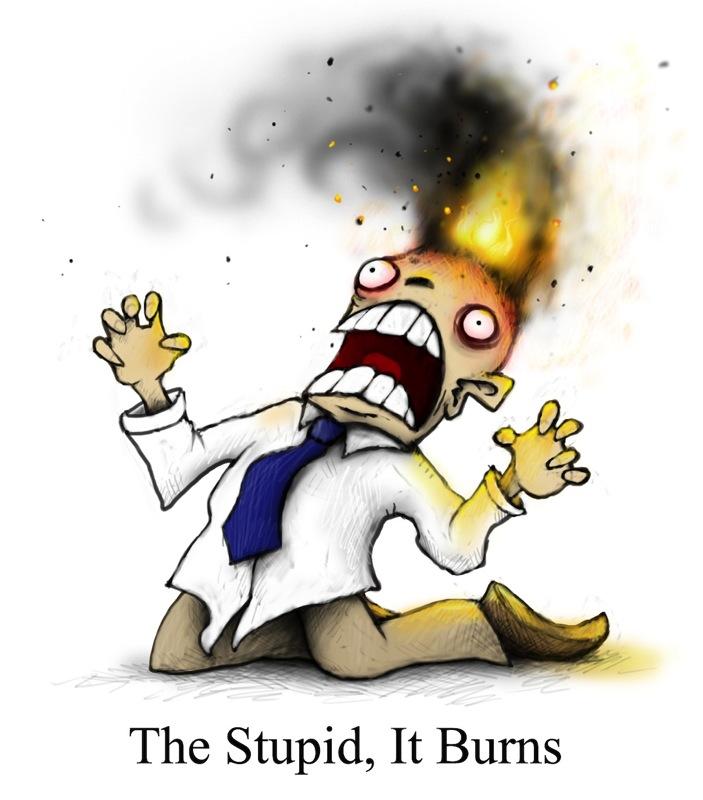 The stupid it burns